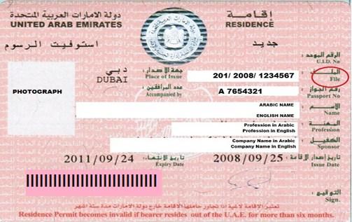 Ajman Media City Free zone visa cost